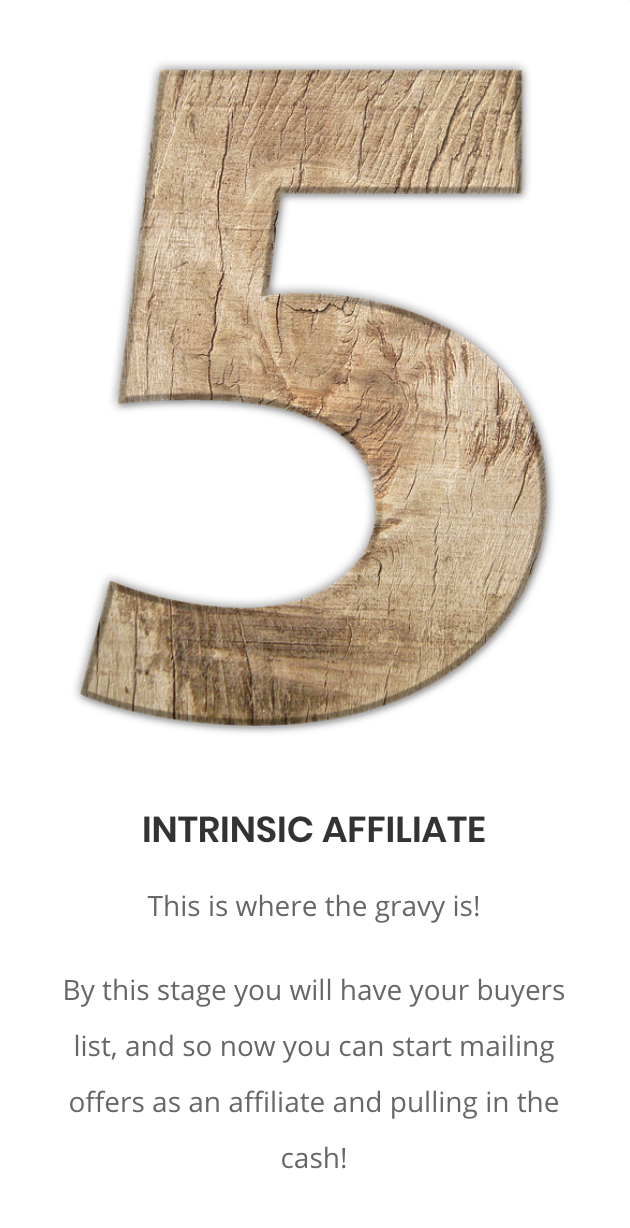 The Fastest Way To Get A REAL BUYERS Email List using the Intrinsic Method 7