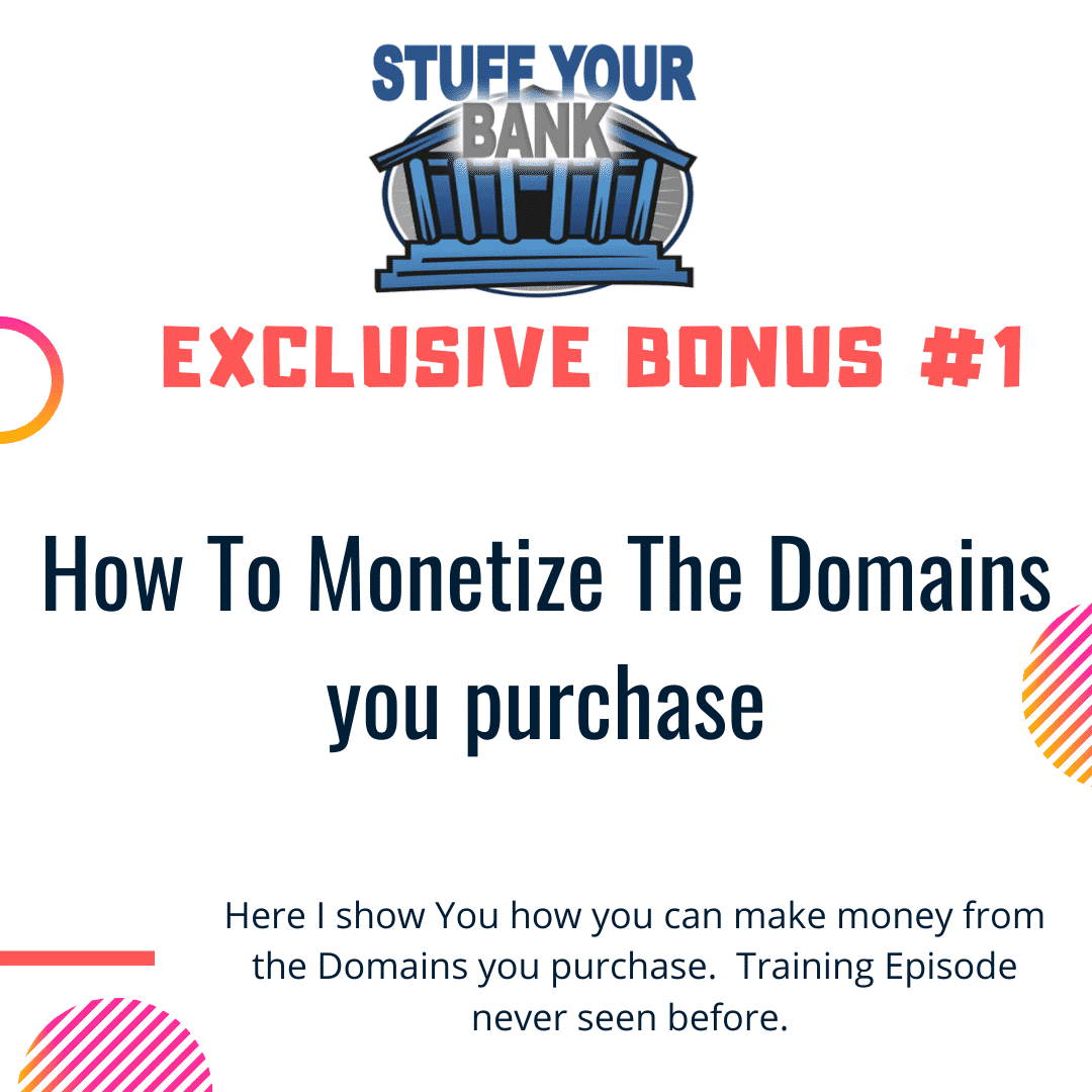 Stuff Your Bank | The world's first PRE-MONETIZED Domaining software 6