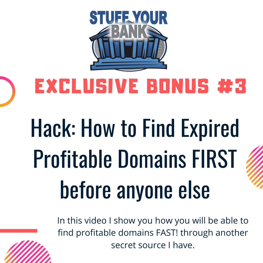 Stuff Your Bank | The world's first PRE-MONETIZED Domaining software 8