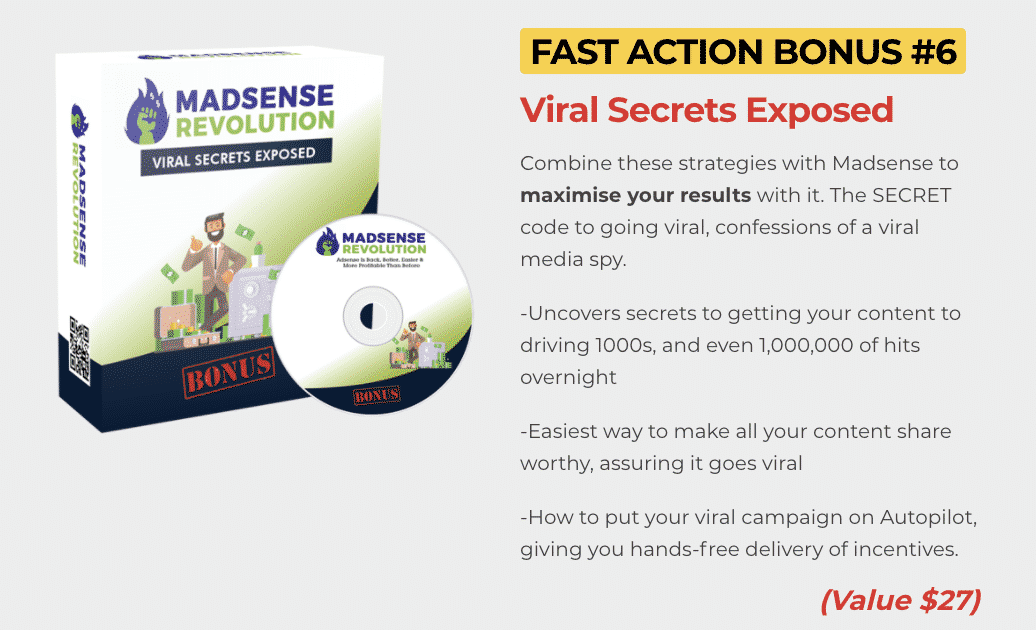 Madsense Revolution : How to get to 100,000 visitors per month and 6 figure income with 0 cost 9
